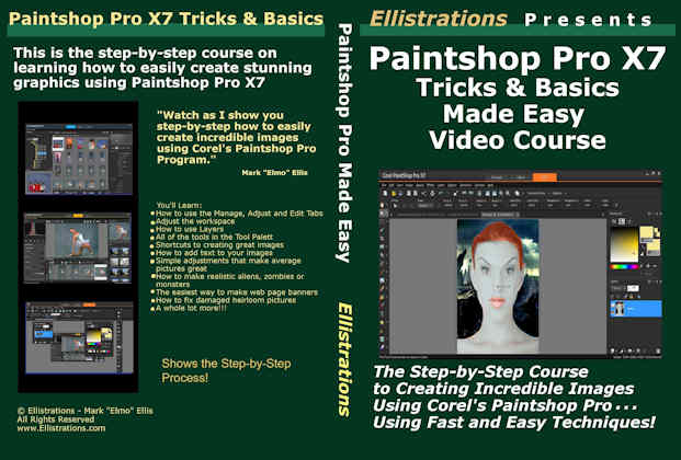 paintshop pro course case
