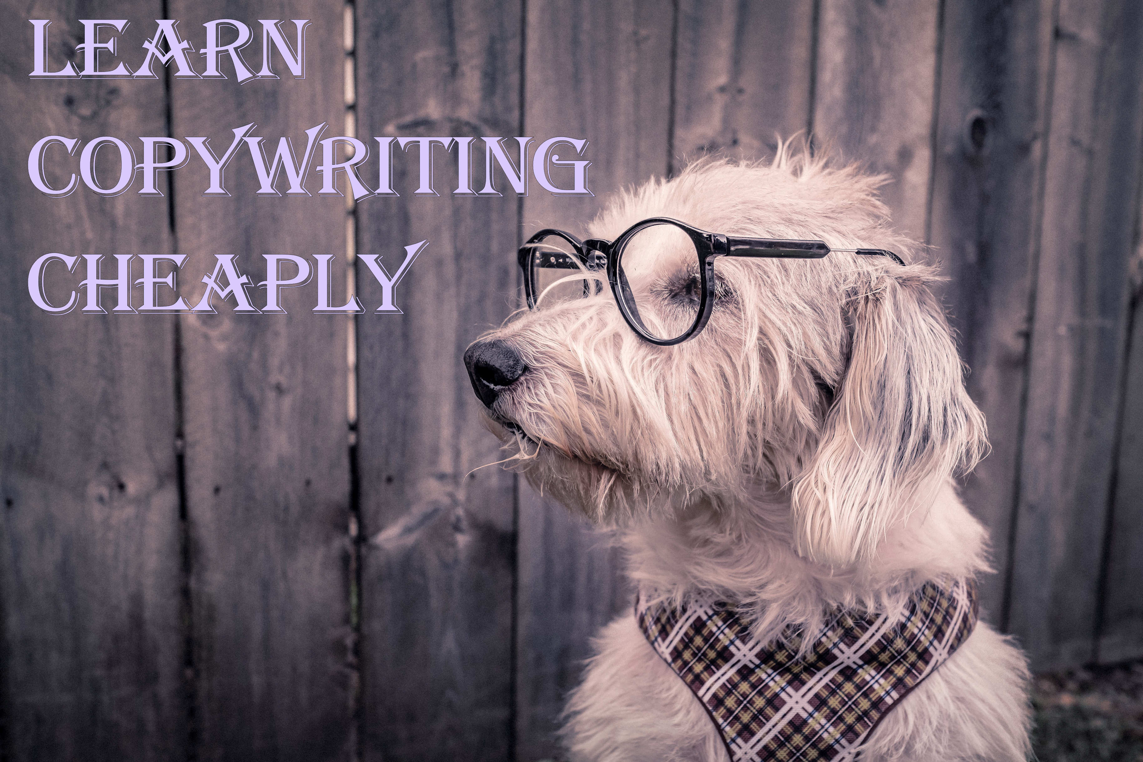 learn_copywriting_cheaply